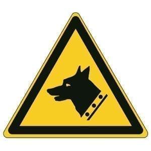Etykieta ostrzegawcza W013 / ISO 7010 - piktogramy BHP